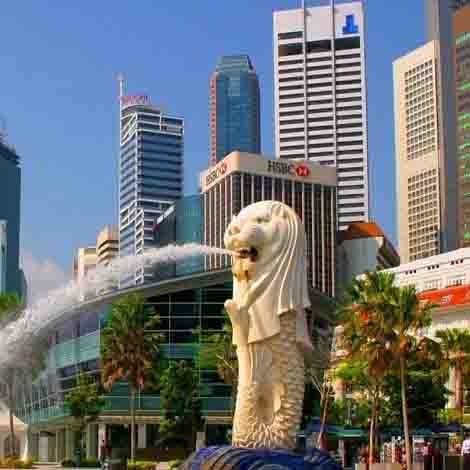 Singapore package of Travefly